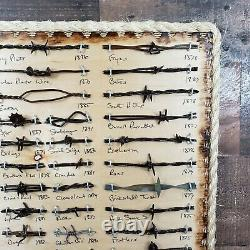 Large Antique Barbed Wire Display 50 cut's Authentic Barbwire Collection
