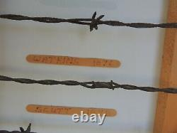 Large Antique Barbed Wire Display cut's of Authetic some 1800's Barbwire
